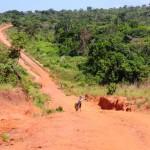 Powitanie z Afryka - Fundacja Zobacz... JESTEM 1