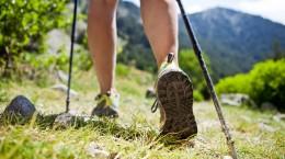 Nordic Walking (kije) - Fundacja Zobacz... JESTEm